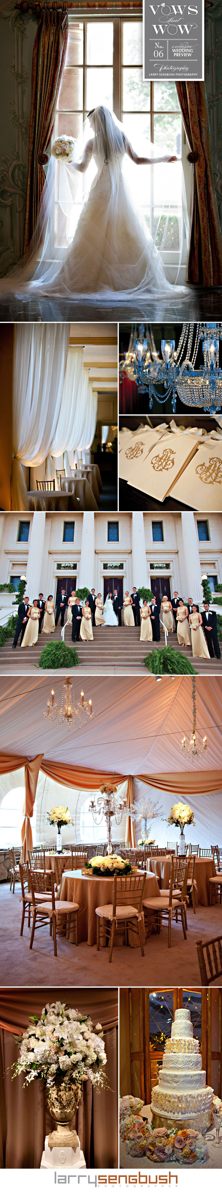 Texas wedding photographer Larry Sengbush Photographer