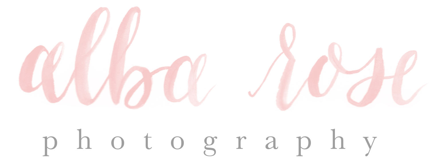 Alba Rose Photography Photography